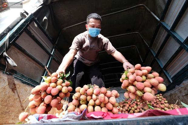 Bác sĩ bị vợ cách ly vì về Bắc Giang gom hàng trăm tấn vải mang xuống Hà Nội bán giúp bà con - Ảnh 4.
