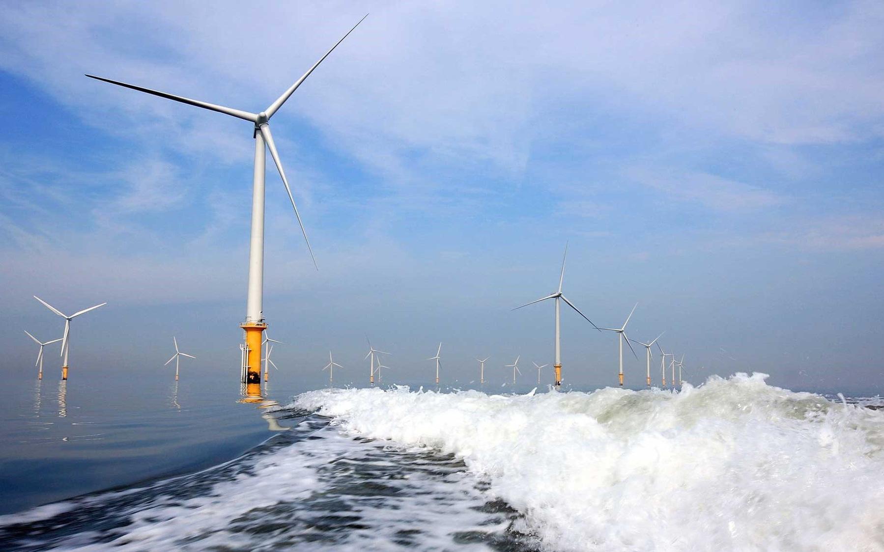 Giá điện có nguy cơ tăng cao nếu thực hiện cơ chế đấu thầu cho các dự án điện gió ngoài khơi ngay lập tức?