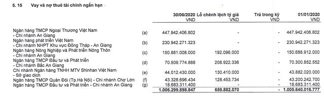 Vốn hóa Việt An giảm 30% khi lãnh đạo bị bắt tạm giam - Ảnh 1.