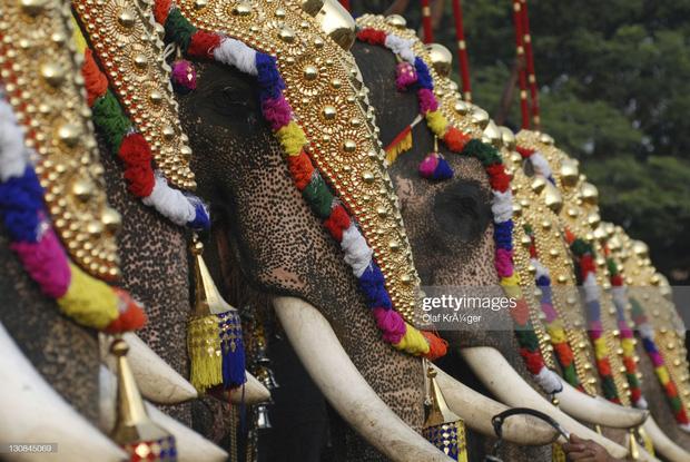 16 thứ độc nhất vô nhị chỉ có thể bắt gặp tại đất nước tỷ dân Ấn Độ: Từ bức tượng cao nhất thế giới đến Đồi Nam Châm hút xe lên dốc - Ảnh 8.