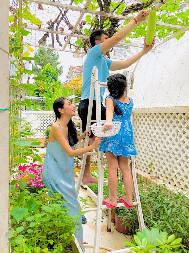 Khu vườn 100m2 xanh tươi của Thủy Tiên - Công Vinh trong biệt thự ở khu nhà giàu: Đầy rau trái xum xuê, ai cũng mơ ước! - Ảnh 1.