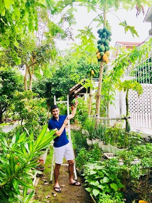 Khu vườn 100m2 xanh tươi của Thủy Tiên - Công Vinh trong biệt thự ở khu nhà giàu: Đầy rau trái xum xuê, ai cũng mơ ước! - Ảnh 2.