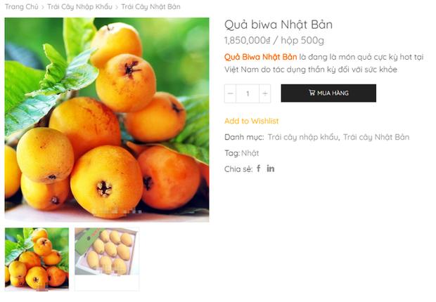 Nhật Bản có loại quả mọc dại đầy đường không ai hái, về đến Việt Nam có giá lên tới 4 triệu/kg, chỉ dành cho hội nhà giàu? - Ảnh 7.