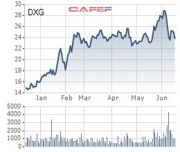 Đất Xanh (DXG): Lên kế  hoạch huy động 300 triệu USD trái phiếu quốc tế - Ảnh 1.