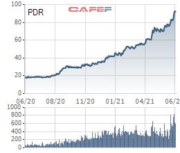 Bất động sản Phát Đạt (PDR): Rót 50 tỷ thành lập công ty con Phát Đạt Realtor, sở hữu 51% cổ phần - Ảnh 1.