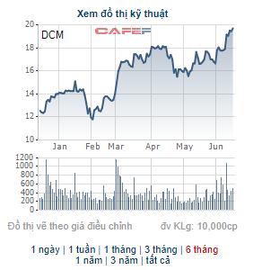 Đạm Cà Mau (DCM) dự chi hơn 420 tỷ đồng trả cổ tức, giá cổ phiếu tăng 44% kể từ đầu năm - Ảnh 2.