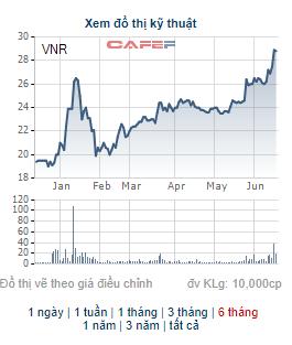 Vinare (VNR) chi 200 tỷ đồng trả cổ tức tỷ lệ 15%, cổ phiếu VNR tăng 45% từ đầu năm - Ảnh 2.