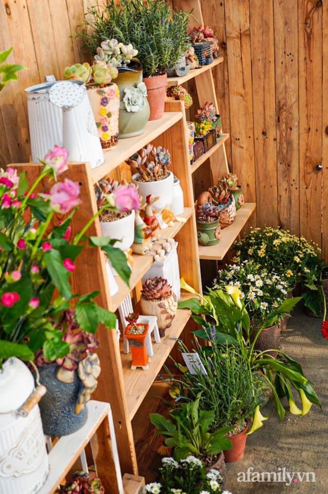 Khu vườn có hơn 100 loài sen đá rực rỡ trên sân thượng của vợ chồng trẻ Hải Phòng - Ảnh 23.
