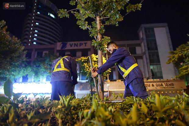 Ảnh: Di dời hàng cây phong lá đỏ trên 2 tuyến phố Hà Nội ngay trong đêm - Ảnh 4.