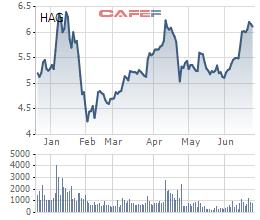 HAGL (HAG): Cổ phiếu trong xu hướng tăng, Thành viên HĐQT đăng ký bán khớp lệnh 500.000 cổ phần - Ảnh 1.