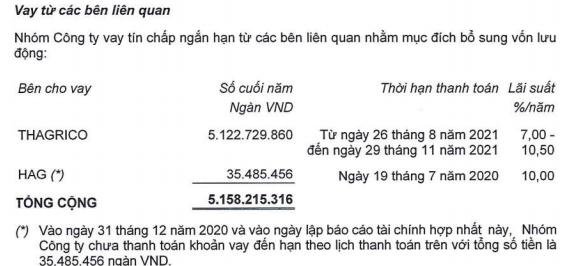 HAGL Agrico (HNG) thông qua các điều kiện, chuẩn bị phát hành hơn 741 triệu cổ phiếu cho Thagrico - Ảnh 2.