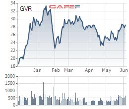 Tập đoàn Cao su (GVR) đặt mục tiêu LNST năm 2021 gần 4.600 tỷ, chia cổ tức 6% bằng tiền mặt - Ảnh 1.