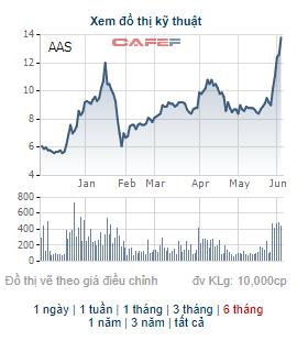 Chứng khoán SmartInvest (AAS) chào bán riêng lẻ 49 triệu cổ phiếu cho 15 nhà đầu tư - Ảnh 2.