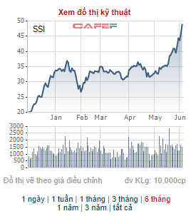 Chứng khoán SSI thông qua phương án phát hành 329 triệu cổ phiếu thưởng và chào bán cho cổ đông hiện hữu - Ảnh 2.