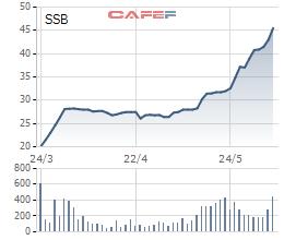 SeABank (SSB) lấy ý kiến cổ đông về room ngoại - Ảnh 1.