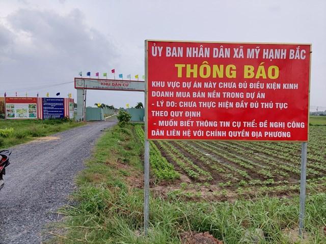 Rộ dự án bất động sản ngang nhiên bán lúa non ở Long An - Ảnh 2.