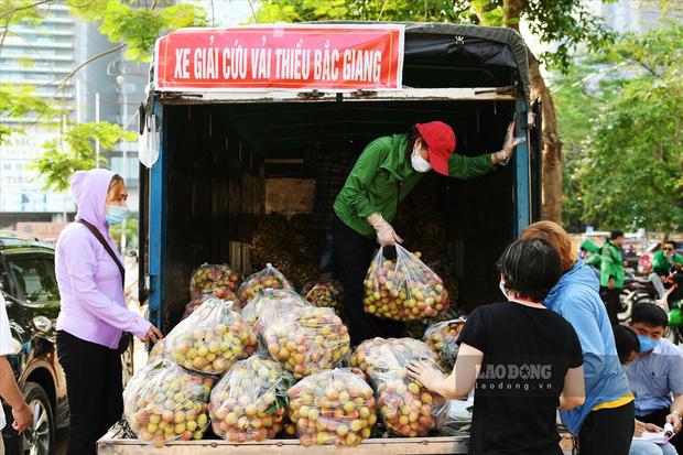 Vải thiều Việt Nam được nhiều quốc gia mê tít: Xuất khẩu hàng nghìn tấn, giá bán có thể lên tới 550k/kg - Ảnh 2.