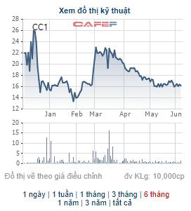 CC1 giảm mạnh, Công ty Tuấn Lộc vẫn quyết bán hết 21 triệu cổ phiếu, không còn là cổ đông lớn - Ảnh 1.