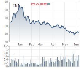 TNS Holdings sắp phát hành 10,5 triệu cổ phiếu trả cố tức năm 2020 - Ảnh 1.
