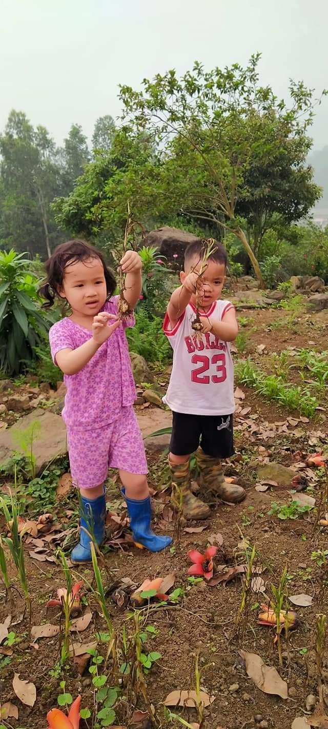 3 ngôi trường liên cấp đặc biệt ở Hà Nội - nơi trẻ được vẫy vùng giữa thiên nhiên, thoát khỏi gánh nặng điểm số: Hạnh phúc là tiêu chí giáo dục quan trọng nhất! - Ảnh 4.