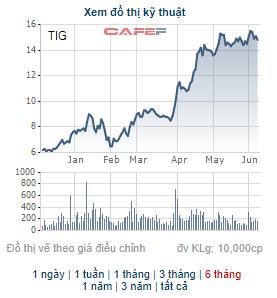 Thanglong Invest (TIG) thông qua phương án chào bán riêng lẻ 30 triệu cổ phiếu - Ảnh 1.