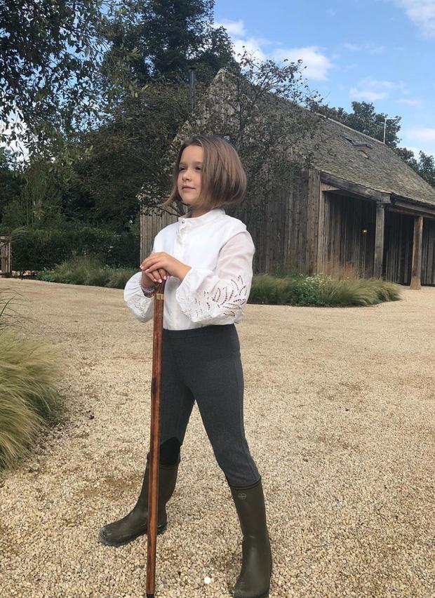 Harper Beckham thay đổi qua 10 năm: Từ bé đã được Tổng biên tập Vogue o bế, đi sự kiện át cả bố mẹ cực phẩm - Ảnh 15.