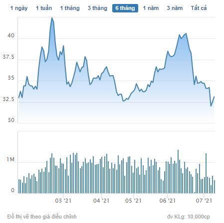 Hải Phát Invest (HPX) triển khai phương án phát hành gần 40 triệu cổ phiếu trả cổ tức - Ảnh 2.