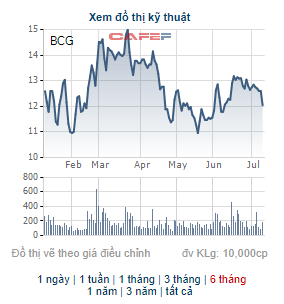 Bamboo Capital (BCG) phát hành 90 triệu cổ phiếu để chuyển đổi cho 900 tỷ đồng trái phiếu - Ảnh 1.
