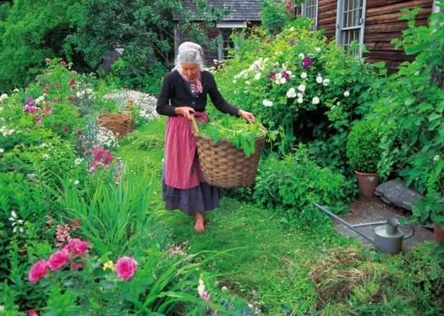 Cuộc sống bình yên ở nơi thôn quê đẹp như vẽ tranh của cụ bà 92 tuổi khiến ai ai cũng ngưỡng mộ: Làm mỏi mệt cả đời chỉ để mong lúc già bỏ phố về quê, trồng cây nuôi cá, sống đời an nhiên thế này - Ảnh 12.