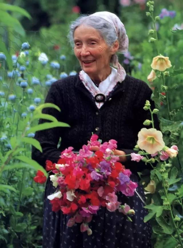 Cuộc sống bình yên ở nơi thôn quê đẹp như vẽ tranh của cụ bà 92 tuổi khiến ai ai cũng ngưỡng mộ: Làm mỏi mệt cả đời chỉ để mong lúc già bỏ phố về quê, trồng cây nuôi cá, sống đời an nhiên thế này - Ảnh 1.