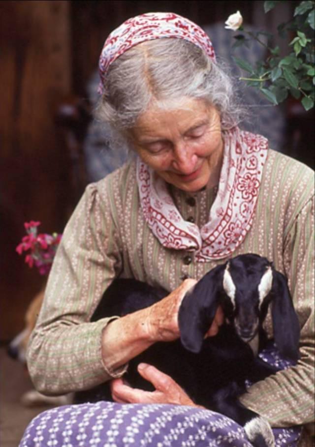 Cuộc sống bình yên ở nơi thôn quê đẹp như vẽ tranh của cụ bà 92 tuổi khiến ai ai cũng ngưỡng mộ: Làm mỏi mệt cả đời chỉ để mong lúc già bỏ phố về quê, trồng cây nuôi cá, sống đời an nhiên thế này - Ảnh 2.