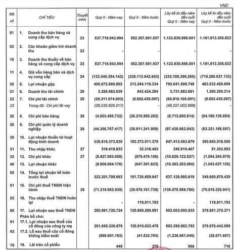 Ghi nhận lợi nhuận từ bán giao đất nền và phân khu chung cư, Phát Đạt (PDR) báo lãi 6 tháng đạt 502 tỷ đồng, tăng 80% so với cùng kỳ - Ảnh 1.