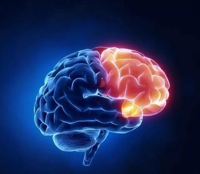 """4 yếu tố là """"lời nguyền"""" của nhồi máu não ở tuổi trung niên: Tránh được và làm tốt 3 việc sau thì giảm được 70-80% nguy cơ đột quỵ, không lo tử vong hay thương tật vĩnh viễn  - Ảnh 1."""
