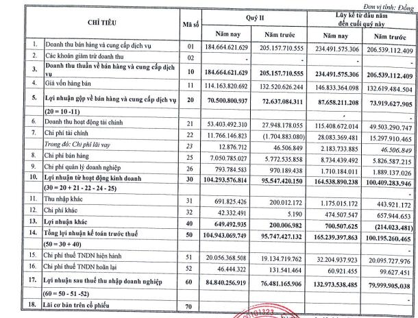 Nhà Đà Nẵng (NDN) lãi 133 tỷ đồng trong 6 tháng, tăng 66% so với cùng kỳ - Ảnh 1.