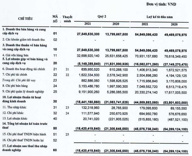 Doanh nghiệp kinh doanh Casino duy nhất trên sàn chứng khoán báo lỗ quý thứ 7 liên tiếp, lỗ lũy kế lên tới 355 tỷ đồng - Ảnh 1.