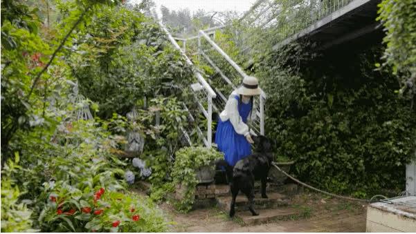 Người phụ nữ bỏ phố về quê để xây dựng vườn hoa 1500m2 đẹp nhất Trung Quốc: Nửa đời người dành cho gia đình, nửa đời sau, hãy dành cho chính mình - Ảnh 17.