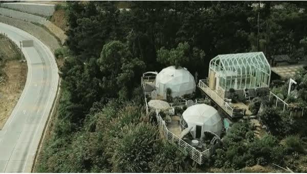 Người phụ nữ bỏ phố về quê để xây dựng vườn hoa 1500m2 đẹp nhất Trung Quốc: Nửa đời người dành cho gia đình, nửa đời sau, hãy dành cho chính mình - Ảnh 27.