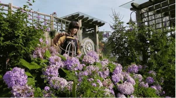 Người phụ nữ bỏ phố về quê để xây dựng vườn hoa 1500m2 đẹp nhất Trung Quốc: Nửa đời người dành cho gia đình, nửa đời sau, hãy dành cho chính mình - Ảnh 24.