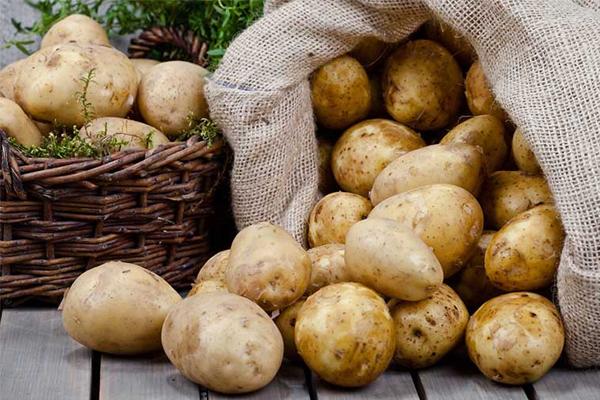 Điểm mặt 7 loại thực phẩm ngon - bổ - rẻ, để được lâu ngày không cần tủ lạnh - Ảnh 1.