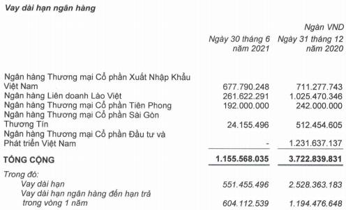 Buông bỏ đứa con nông nghiệp và quyết tâm trả nợ cho HAGL, bầu Đức trong 6 tháng đã giảm được 10.000 tỷ dư nợ vay - Ảnh 2.