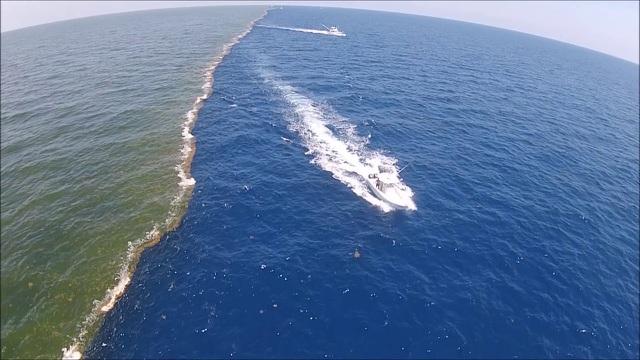 Vì sao nước Thái Bình Dương và Đại Tây Dương lại tách đôi: Đáp án khiến bạn ngạc nhiên!  - Ảnh 2.