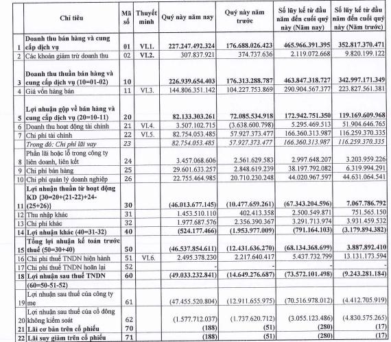 Gánh nặng chi phí tài chính và chi phí bán hàng, Tasco (HUT) báo lỗ 49 tỷ đồng quý 2 - Ảnh 1.