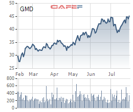 Gemadept (GMD): Sản lượng 6 tháng đầu năm tăng mạnh 30%, Gemalink đã khai thác 2 tàu tải trọng 200.000DWT - Ảnh 1.