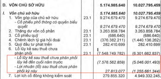 Hoàng Anh Gia Lai (HAGL): Muốn dùng thặng dư vốn xử lý lỗ luỹ kế, con gái bầu Đức sắp chi 51 tỷ mua vào 4 triệu cổ phiếu - Ảnh 1.