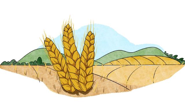 Mưa lũ tồi tệ tại Trung Quốc đe dọa nguồn cung nhôm, rau, ngô - Ảnh 3.