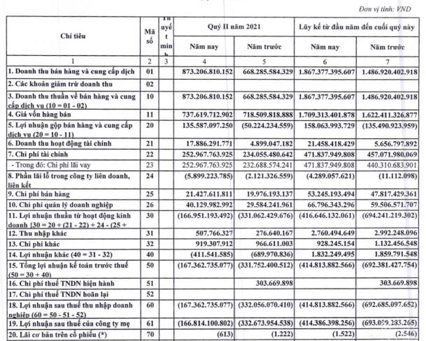 Tiếp tục thua lỗ 167 tỷ đồng trong quý 2/2021, Đạm Hà Bắc (DHB) nâng lỗ lũy kế lên hơn 5.000 tỷ đồng - Ảnh 1.