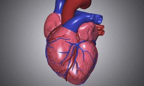 Sau 40 tuổi, nếu đột ngột đau nhức ở 3 vị trí này thì rất có thể là dấu hiệu của nhồi máu cơ tim, nên đi kiểm tra tim mạch sớm  - Ảnh 3.