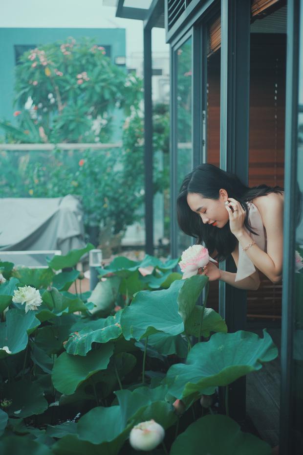 Cặp vợ chồng trẻ trồng sen trên căn penthouse tầng 30: Nhìn thành quả ai ai cũng ngỡ ngàng và ngưỡng mộ - Ảnh 10.