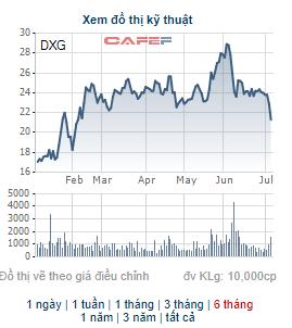 Chủ tịch HĐQT Đất Xanh Group đăng ký mua 10 triệu cổ phiếu DXG - Ảnh 1.