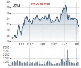 Đất Xanh (DXG): Sau Chủ tịch Lương Trí Thìn, quỹ ngoại Dragon Capital mua vào 1 triệu cổ phiếu - Ảnh 3.